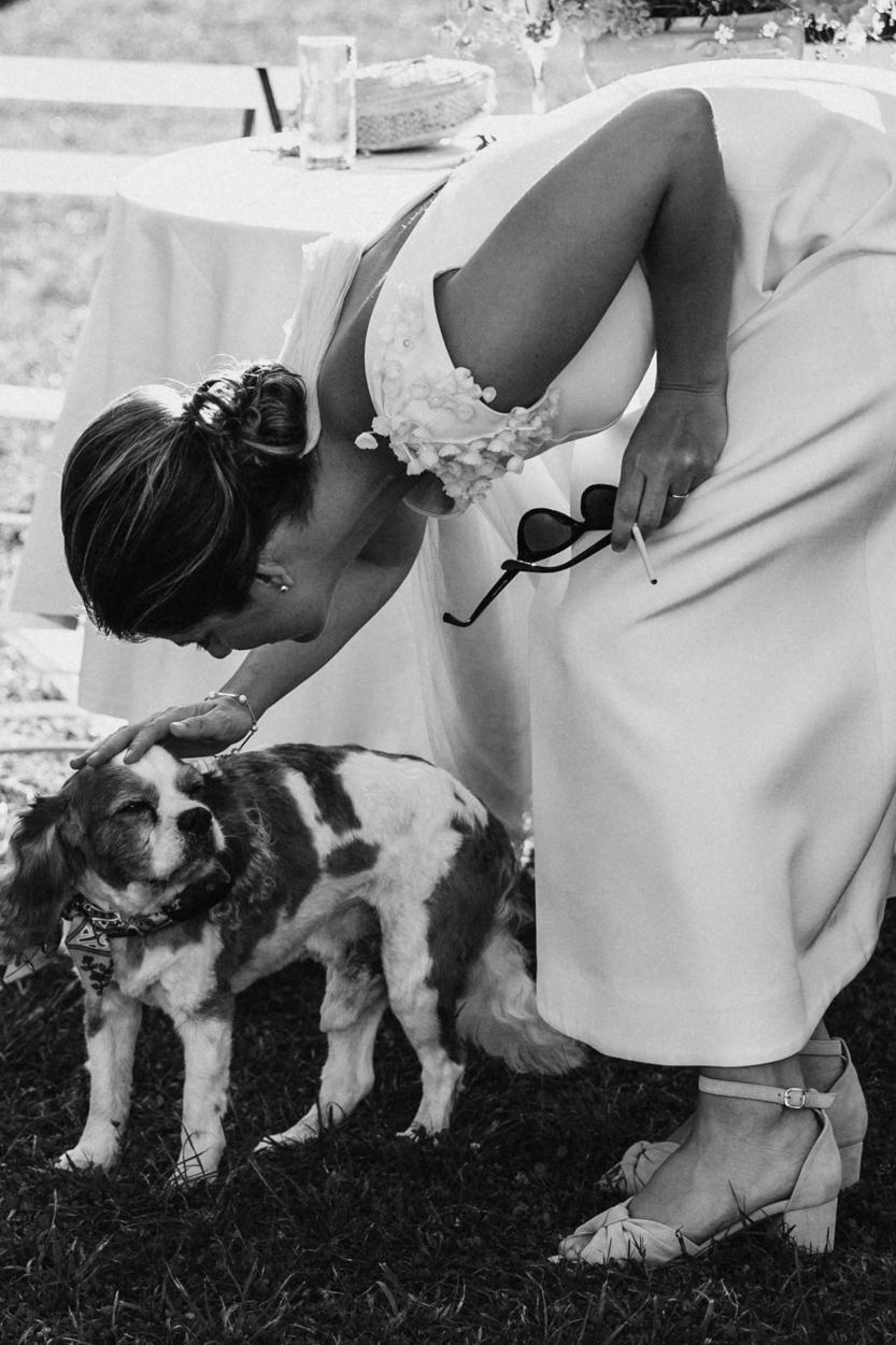 mariée et chien chateau canon