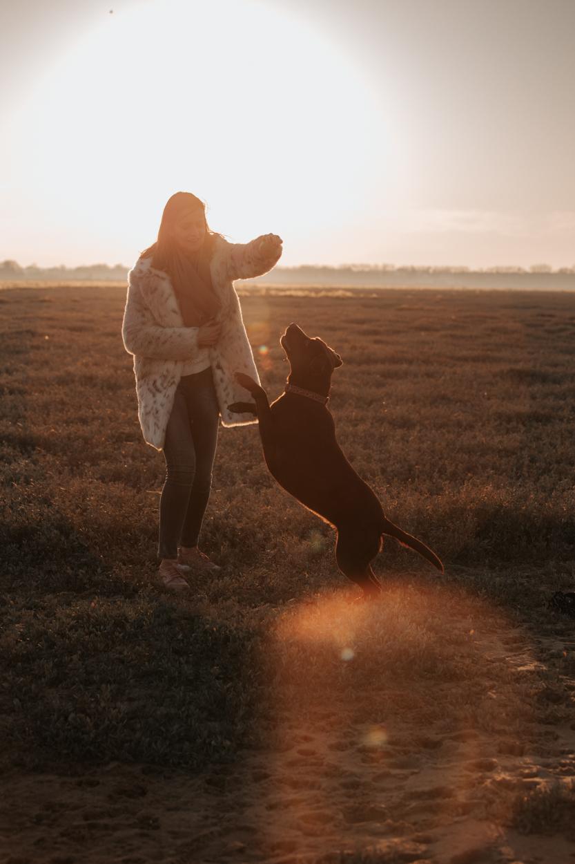 Labrador et son humaine golden hour Pointe du siège