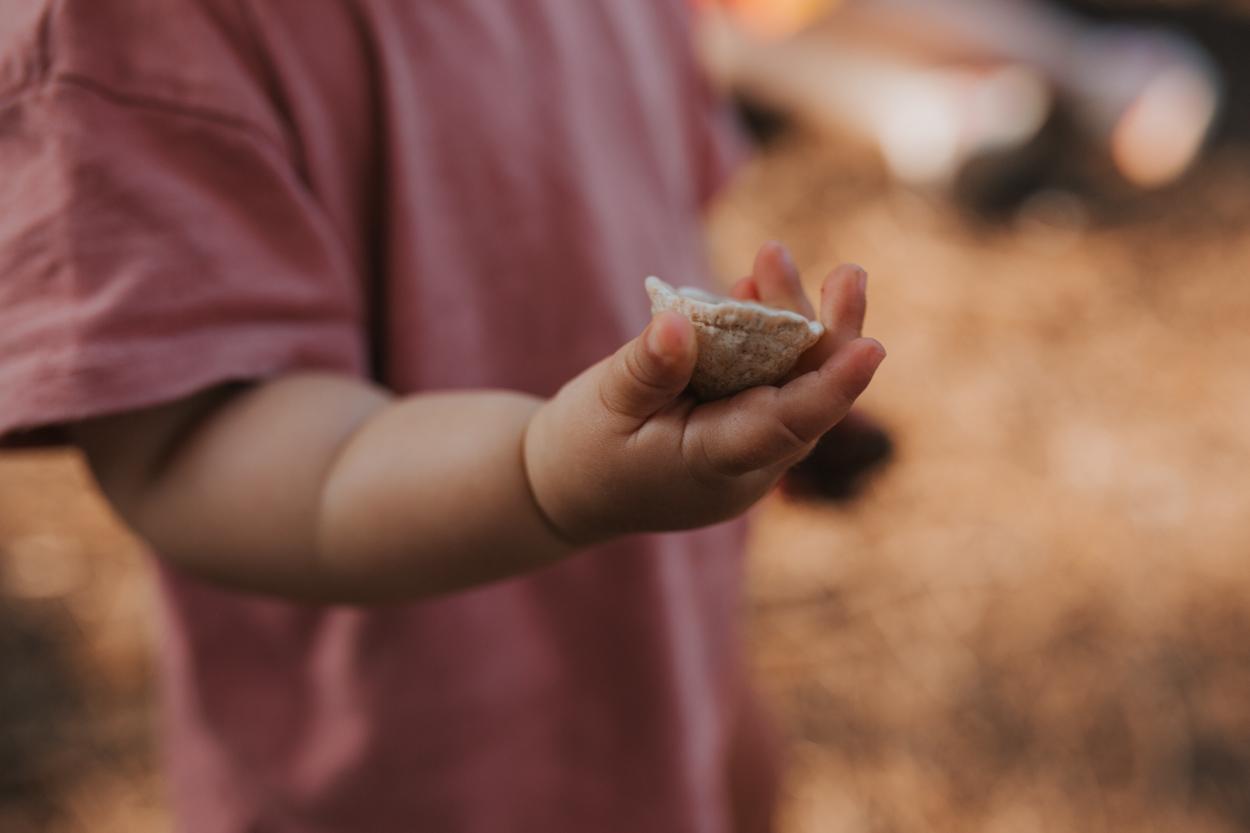 main enfant coquillage golden hour